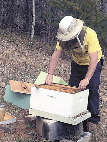 Local beekeeper receives grant that's the bees knees