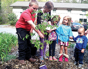 Earth Day at Mountains Branch Library