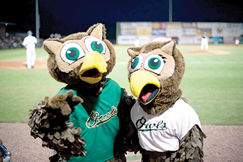 Take me out to the ball game: Return of the Owls