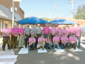 Pink patches provide funds for awareness and restoration