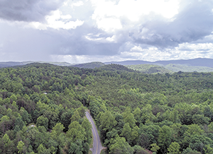 54,000 Acres & Counting: Summer Fundraising Challenge Underway for Foothills Conservancy of NC