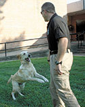 Isothermal Gets A K-9... He Can Detect Drugs & Firearms!