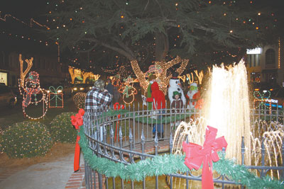 Forest City... A True Fantasy Of Christmastime!