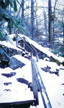 South Mountain State Park Splendor