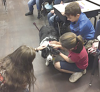 Community Pet Center Launches  Education in the Classroom Pet Program