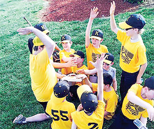 Forest City Little League holds Day in the Park