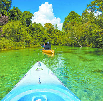 Learning to kayak, canoe and more